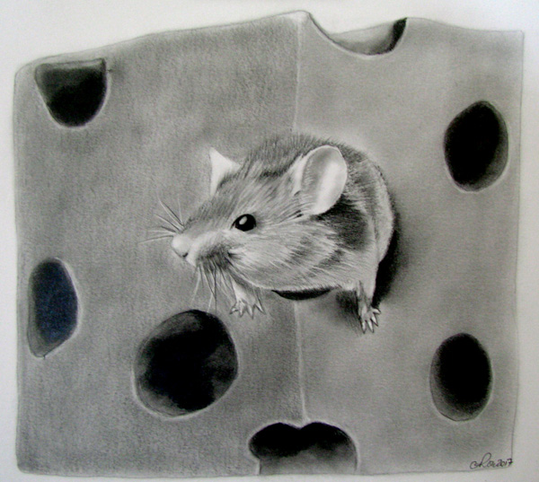 Mouse-Swiss Cheese